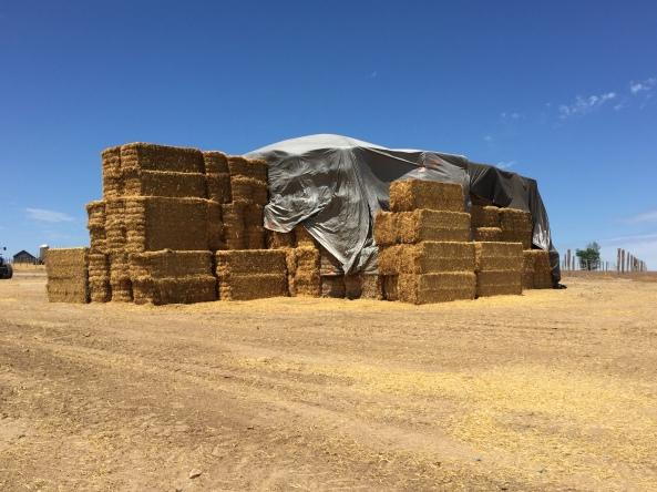 straw pile