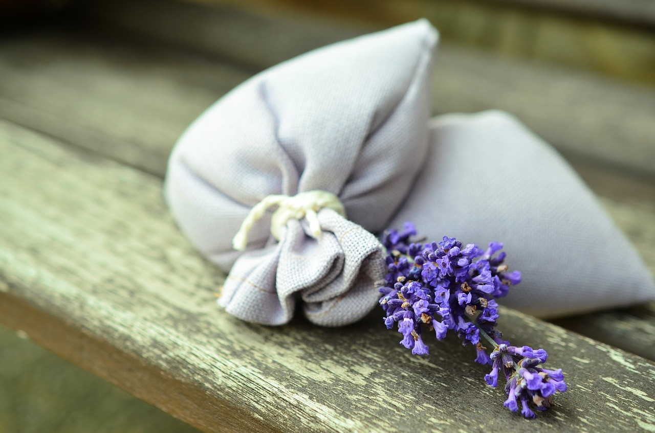 lavender-823584_1280